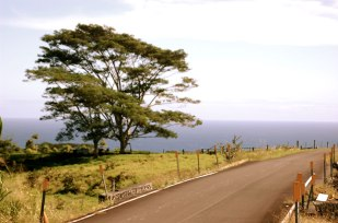 This road was originally for Sugarcane trucks on the Hamakua Coast.